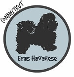 Connecticut Havanese Breeders