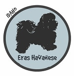 Idaho Havanese Breeders