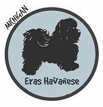 Michigan Havanese Breeders