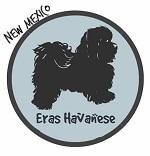 New Mexico Havanese Breeders