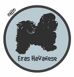 Ohio Havanese Breeders