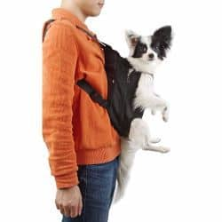 Pet Front Carrier